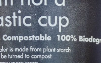 What are Bioplastics? Are they the solution?